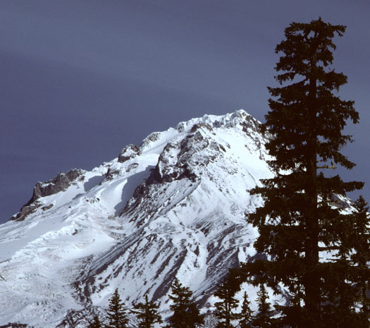 Mt. Hood from Timberline Lodge.